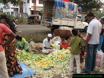 sweet corn vendor