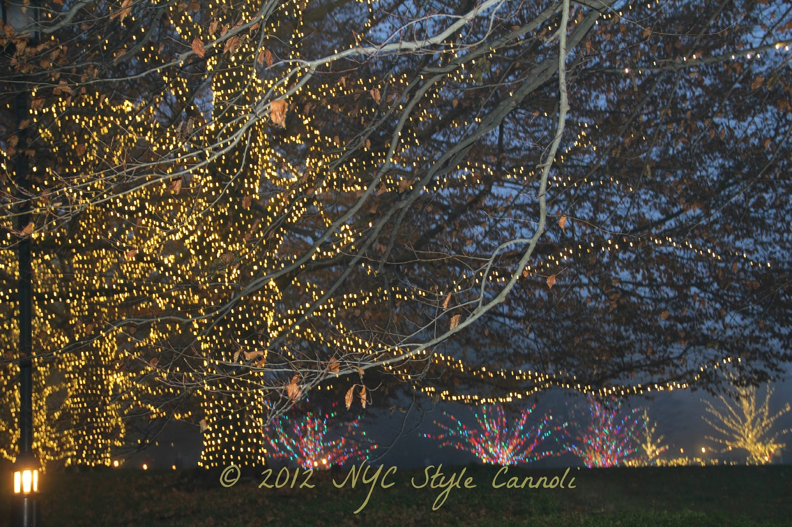 A Trip to Longwood Gardens at Christmas | NYC, Style & a little Cannoli