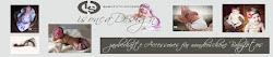 onlineShop für BabyfotoAccessoires