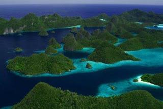 El amazonas de coral mas increíble