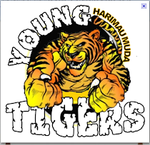 YoungTigers