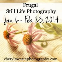 http://cherylmccainphotography.com/frugal-still-life-photographer/