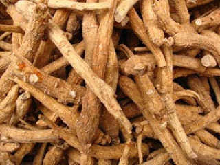 Panax ginseng help regulate the heart rate to return to normal faster.