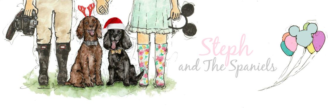 Stephanie Dreams   Dog Friendly & Lifestyle Blog