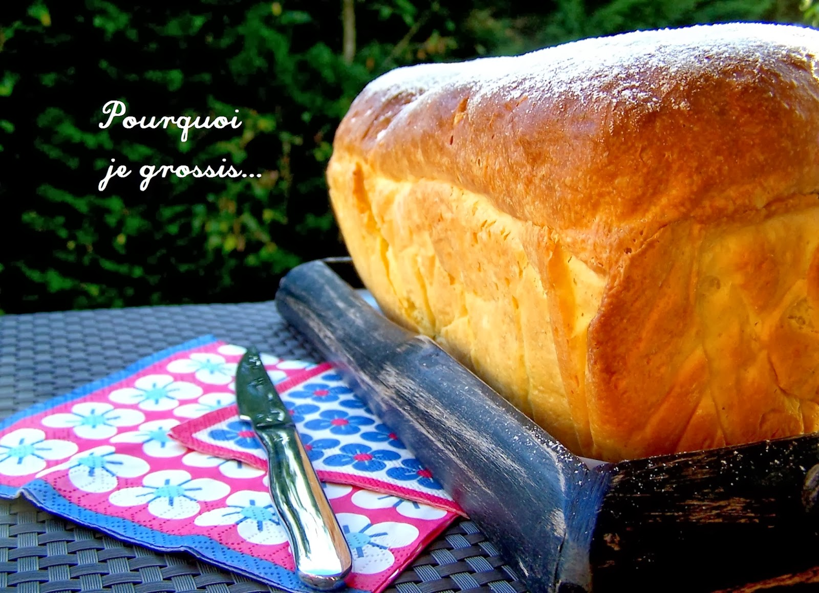Pourquoi je grossis brioche butchy saveur for Pourquoi je grossis