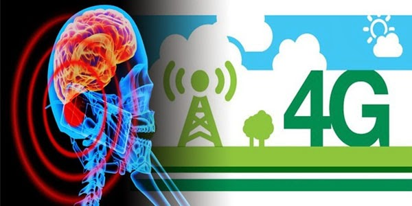 The 4G Radiation Dangers: 30 Minutes of Exposure Affects ...