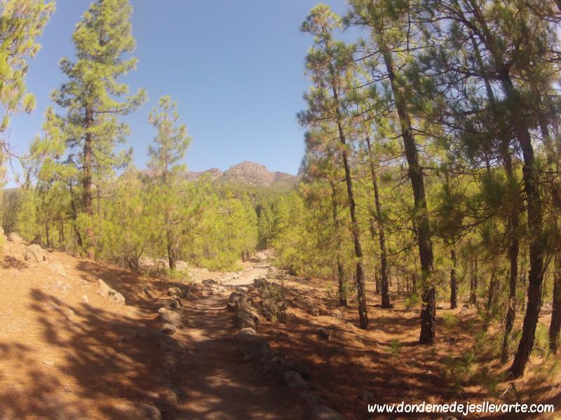 Ruta del Paisaje Lunar - Vilaflor (Tenerife)