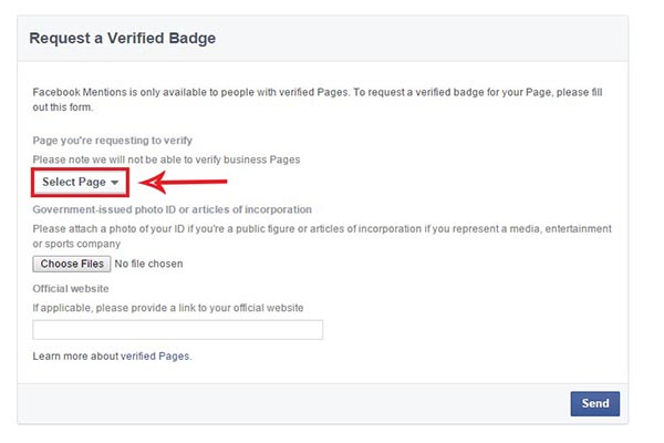 How To Verify Facebook Page With Verification Request Form | Blue ...