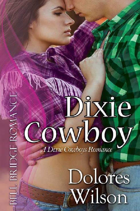 Dixie Cowboy