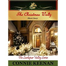 Looking for a Christmas Read?