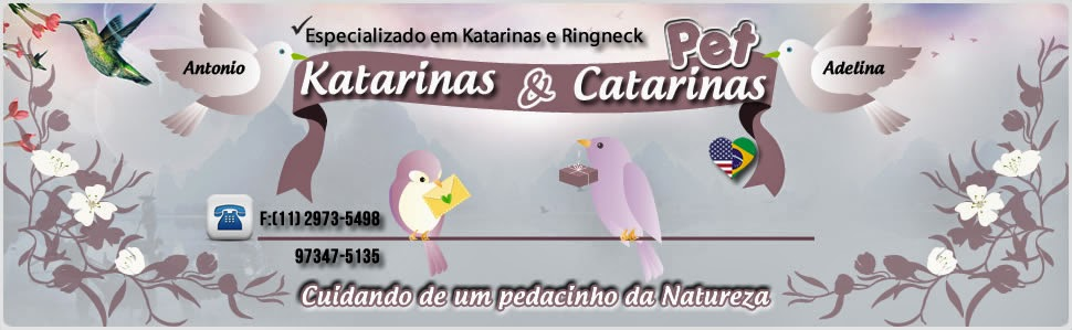 Katarinas e Catarinas PET