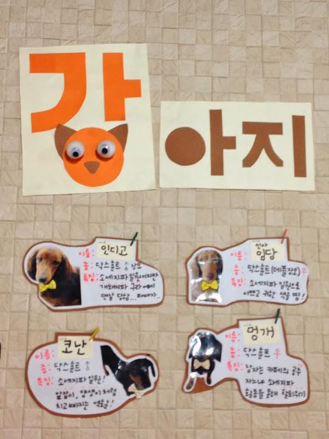 Dog Cafe in Seoul