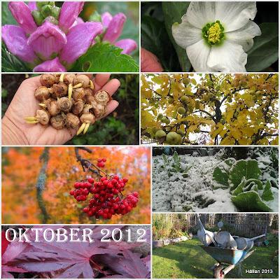 Återblick 2012/Oktober