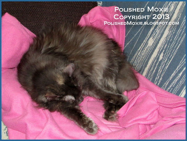 Picture of Gracie on the pink snuggie from another angle.