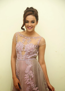 Actress Seerat Kapoor Pictures in Long Dress at Tiger Audio Launch 112