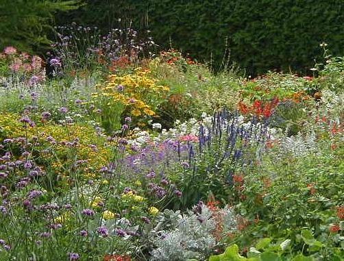 Trouvailles les jardins du qu bec for Ca vient du jardin