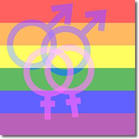 Pesquisa sobre Gay