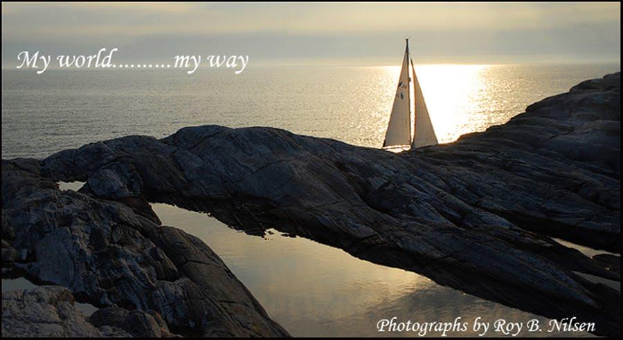 Roy`s photoblog