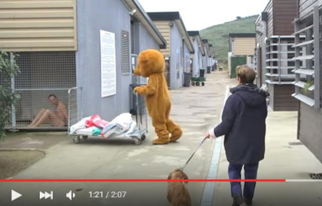 Dans sa dernière vidéo, postée ce mardi sur YouTube, Rémi Gaillard se pose en défenseur des animaux. Une cause que l'humoriste montpelliérain, qui comptabilise 5,4 millions d'abonnés et 1,5 milliard de vues, évoque depuis déjà plusieurs mois.