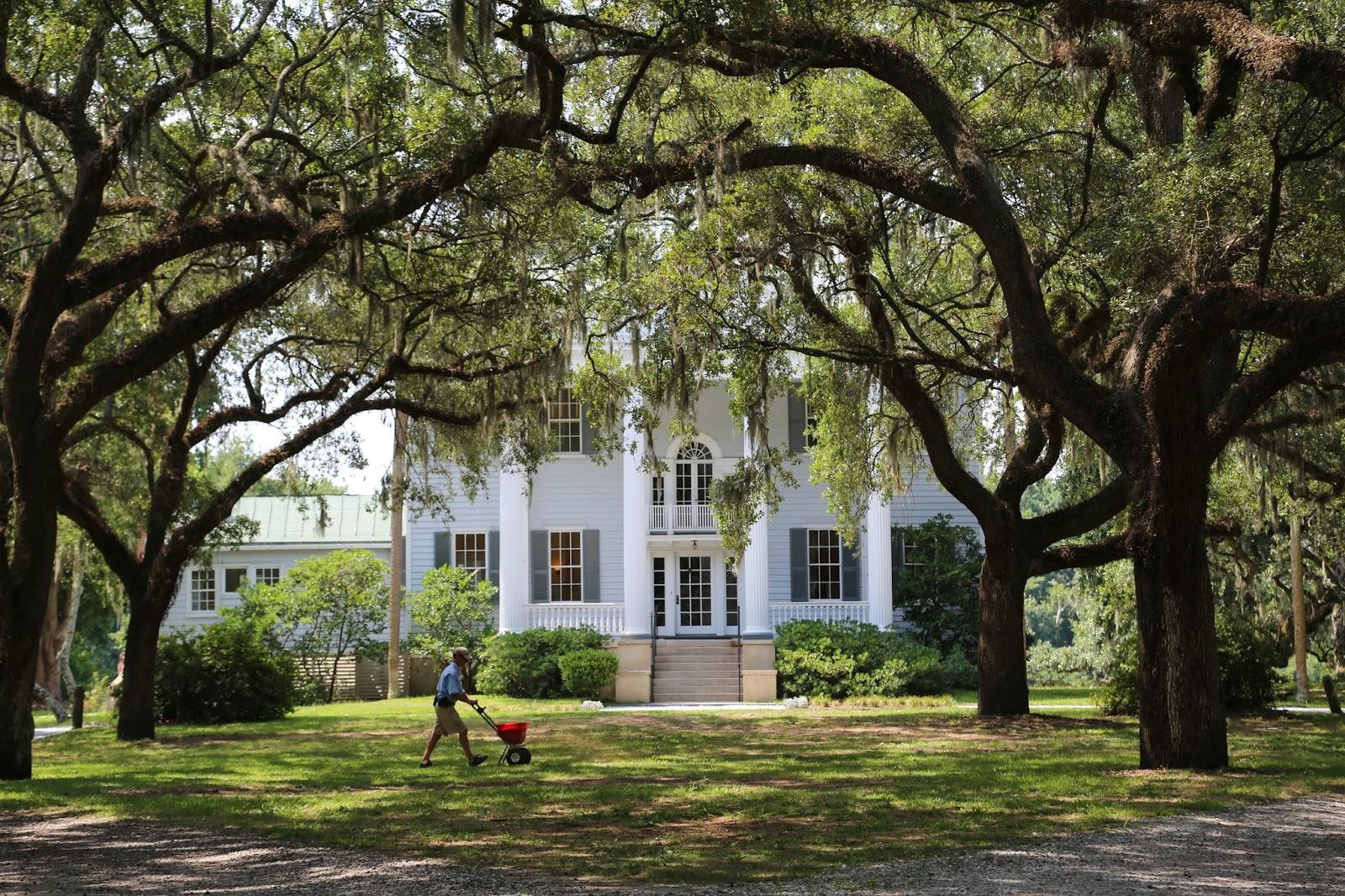 Charleston Daily Photo Mcleod Plantation