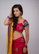 Neelam Upadhyay latest Hot Photos-thumbnail-13