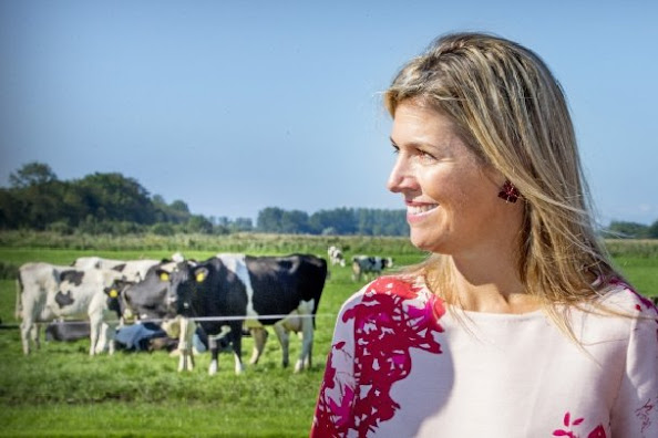 Queen Maxima of The Netherland visits a dairy farm (FrieslandCampina) in Koudum