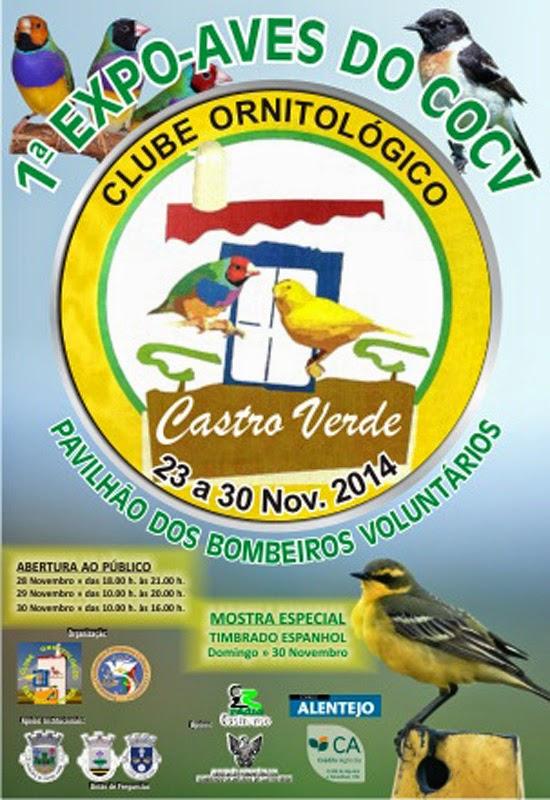 http://www.cm-castroverde.pt/pt/menu/7/o-concelho.aspx