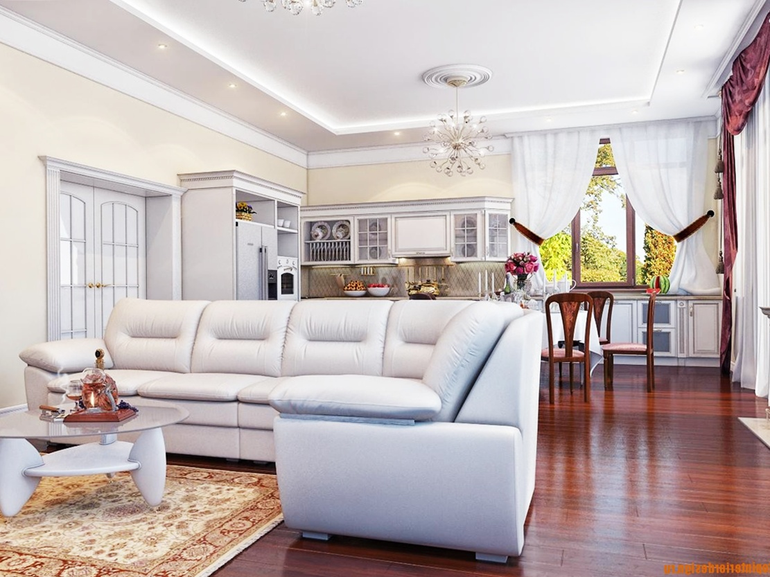 Superior Interior Design A Combined Kitchen Living Room Design