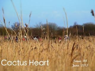 Book Review: CACTUS HEART, Issue 4, June 2013 (pg 147-179)