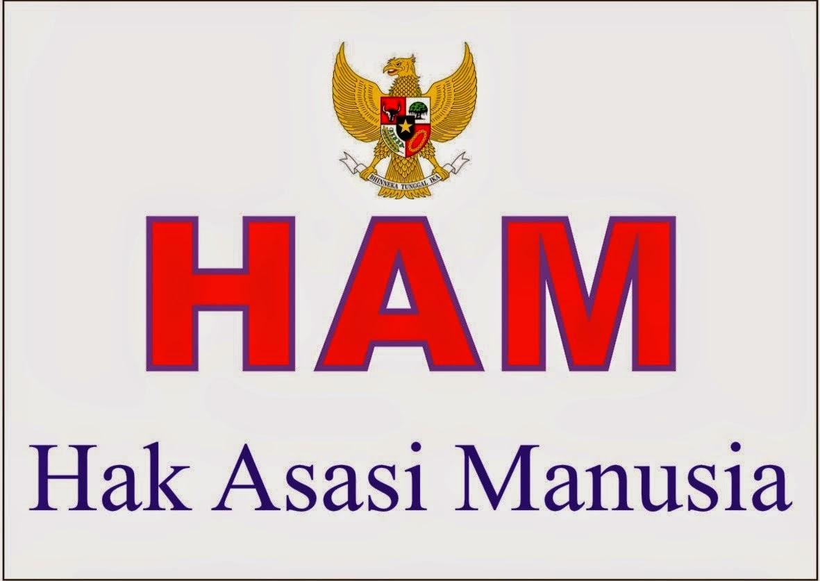 PENGERTIAN HAM (HAK ASASI MANUSIA) MENURUT AHLI