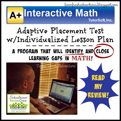 A+ Interactive Math Product Review