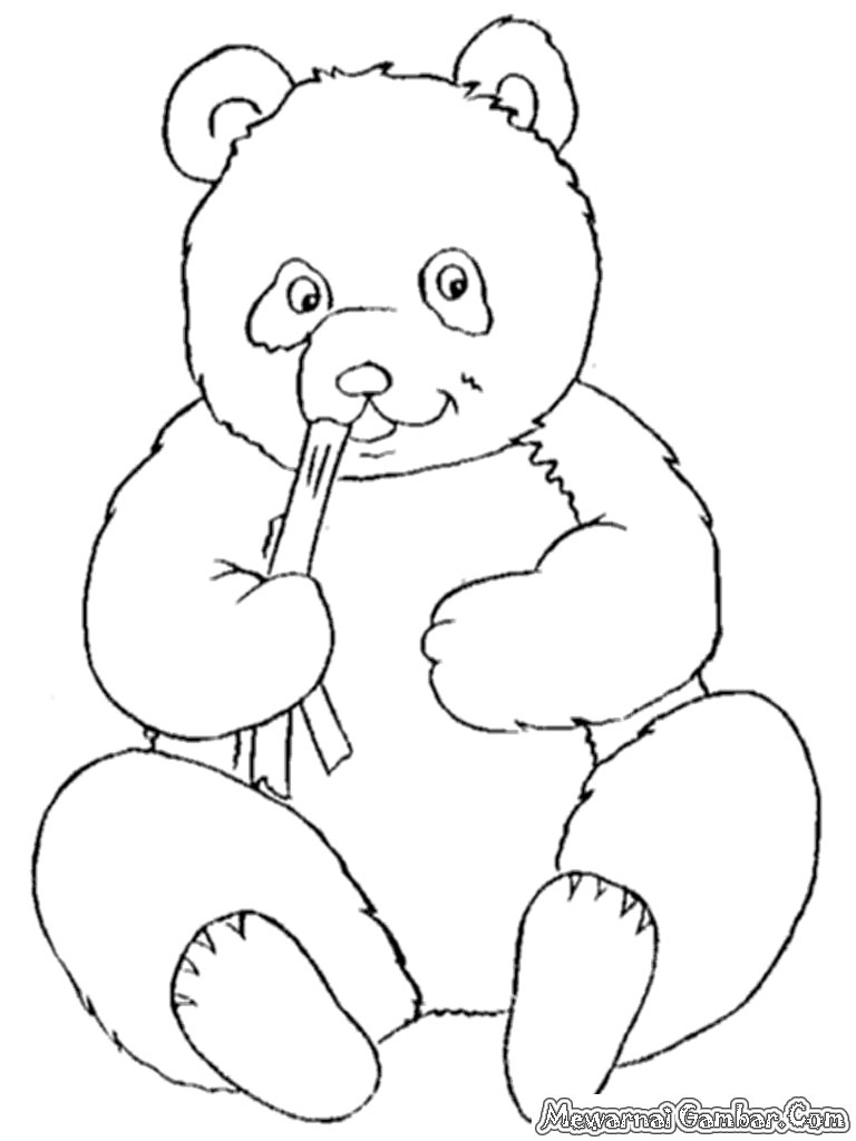 93 Gambar Hewan Panda Untuk Mewarnai Gratis Gambar Hewan