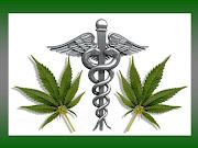La marihuana, dilata las vías respiratorias de .