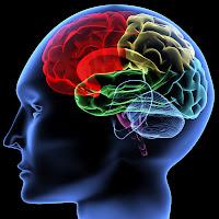 Tips mencerdaskan otak