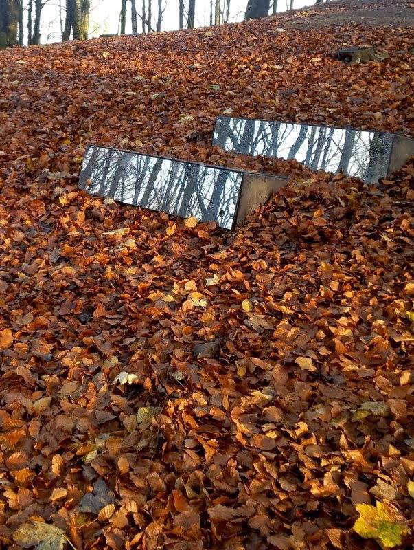 Speil i skogen