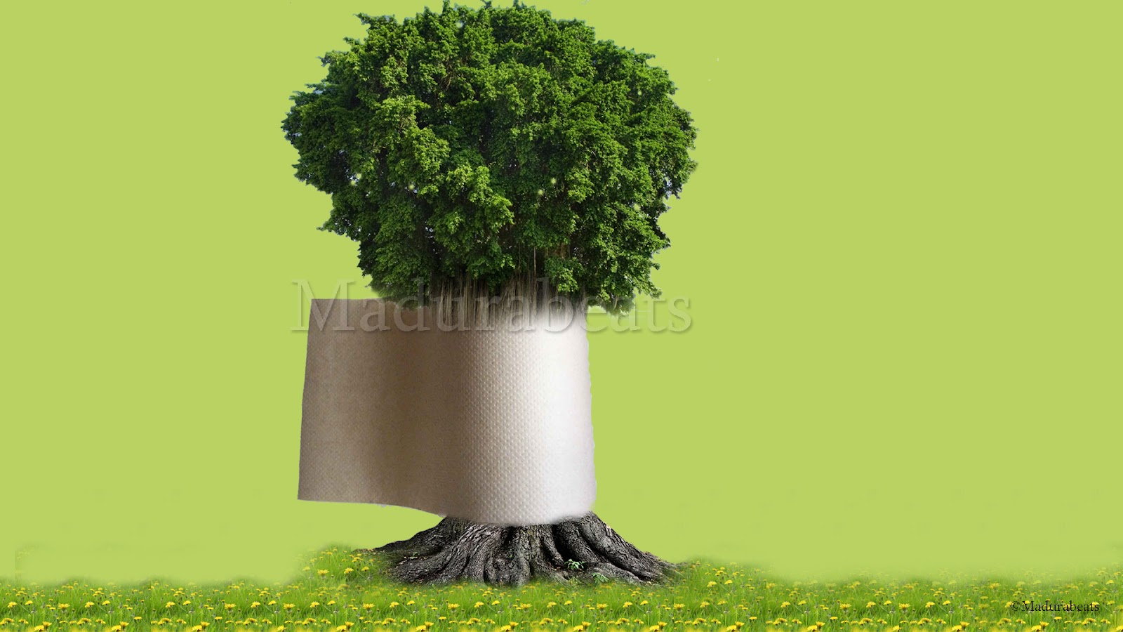 Paper roll tree - Paper roll in tree trunk with green background