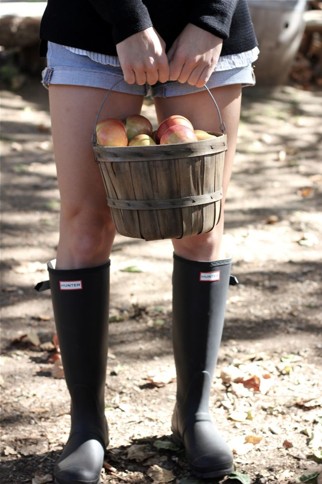 Hunter boots, apples, basket, cuffed shorts, fall, Shae Roderick