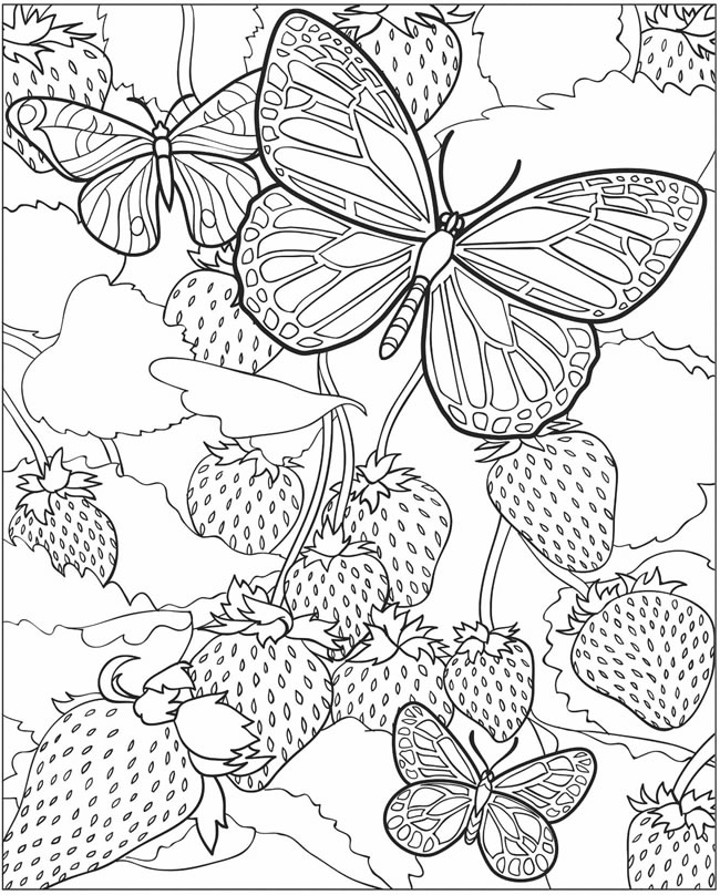 coloring pages detailed butterfly - photo#4