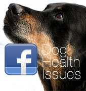 Dog Health Issues group