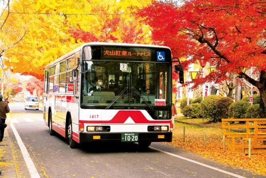 http://3.bp.blogspot.com/-oTZgpGN-j2w/VlEMn4S1tMI/AAAAAAAIIBs/p4PZjuDSqvk/s1600/koyo-bus.jpg