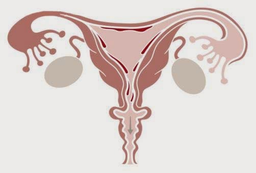 obat penebalan dinding rahim