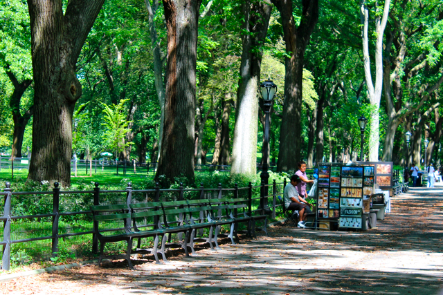 Central park NYC benches