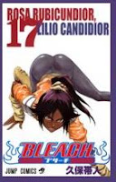 Bleach tomo 17