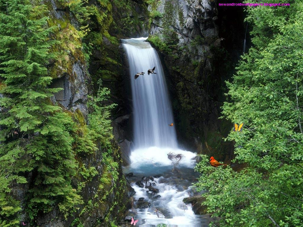 Hd Wallppaers Beautiful Natural Water Fall Wallpapers Download Free