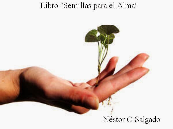 Compra el nuevo libro de Nestor O Salgado
