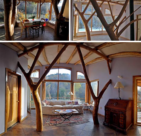 http://3.bp.blogspot.com/-oUbqesJUS7c/UC7vy4z3TMI/AAAAAAAAAwM/ViLhY27WQB4/s800/organic-modern-tree-house-vida-think-tank.jpg
