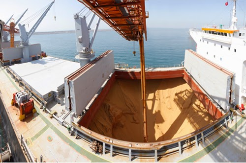http://www.maritime-executive.com/article/rivals-join-for-grain-port-venture