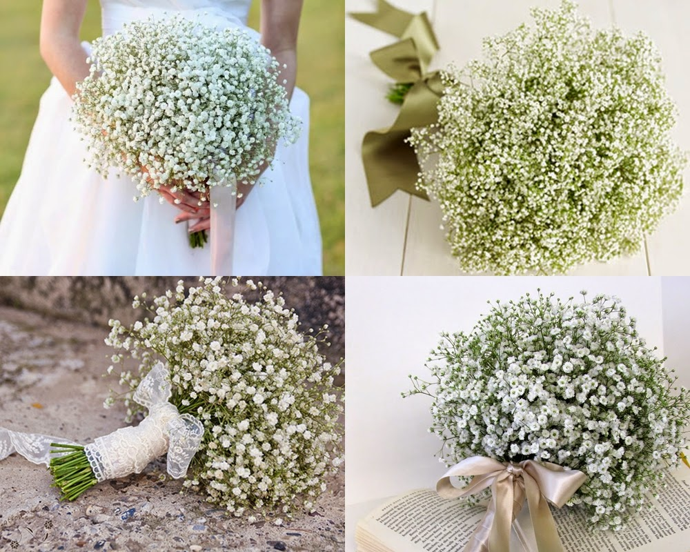 Perfect flower for wedding hand bouquet steves decor this herbaceous plant also called million stars the branches have a delicate appearance and bear tiny scented pink or white flowers mightylinksfo