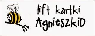 http://diabelskimlyn.blogspot.com/2014/01/lift-kartki-agnieszkid.html