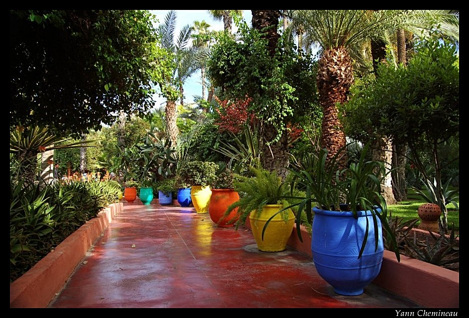 Floril ge le jardin majorelle marrakech for Jardin yves saint laurent marrakech